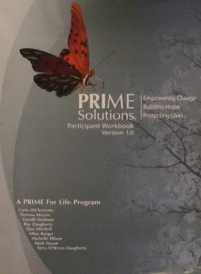 Prime Solutions Workbook